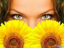 Sunflower Oil, Crude & Refined. Ukraine Origin. - photo 1