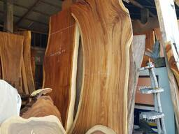 slabs and cuts of elite wood