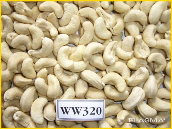 Cashew Kernel Nut