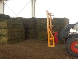 Grade A Alfalfa/Lucerne Hay for sale near me