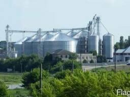 Sunflower Oil, Crude & Refined. Ukraine Origin. - фото 3