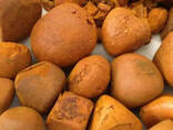 Grade A Cow Ox Gallstone for sale in South Africa - photo 1