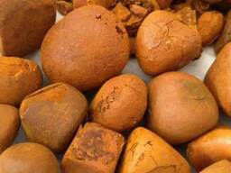 Grade A Cow Ox Gallstone for sale in South Africa